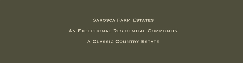 Sarosca-panel-1170